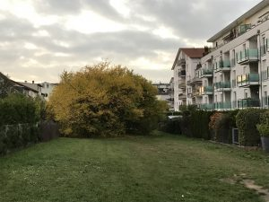 Herbst in Walldorf